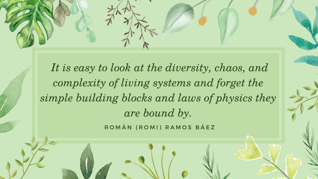 quote:  It is easy to look at the diversity, chaos, and complexity of living systems and forget the simple building blocks and laws of physics they are bound by.
